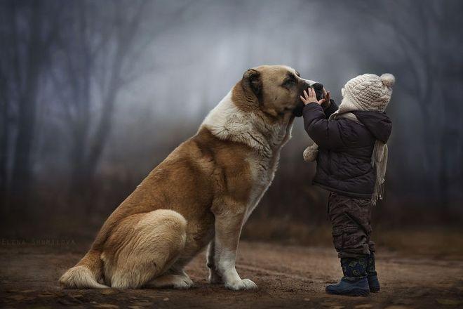 Τι μαθαίνουν τα παιδιά από τα ζώα?