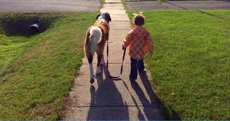 Η σωστή βόλτα